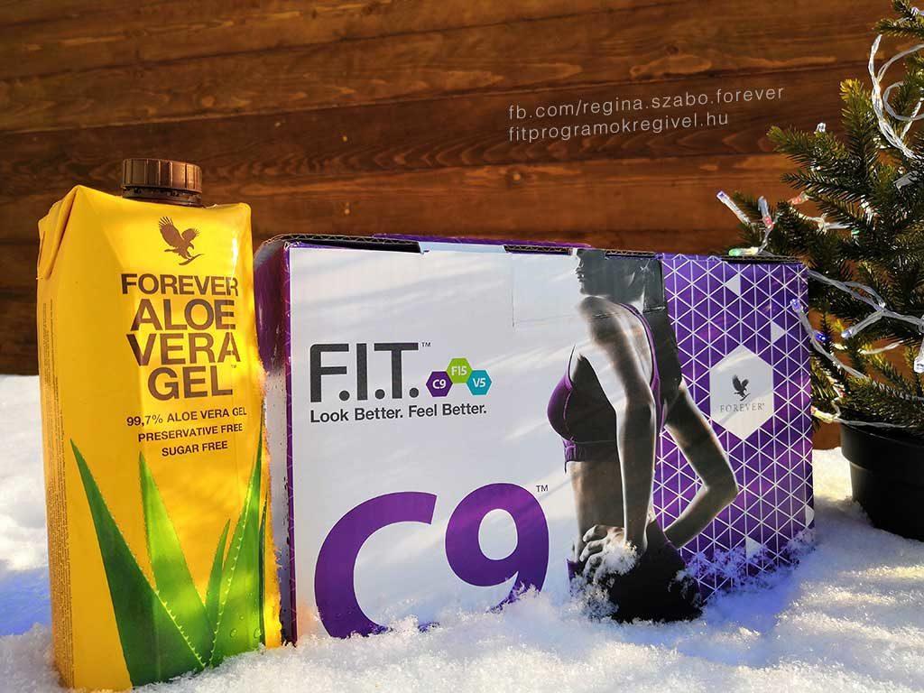 c9 program karácsonyra aloe flp flpshop Regi FIT mentor